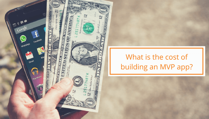 what-is-the-cost-of-building-mvp-app