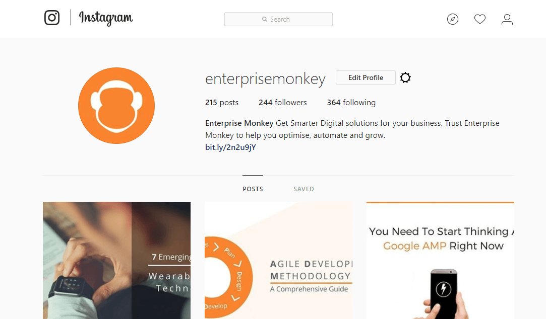Snapshot of Enterprise Monkey Instagram Web Version