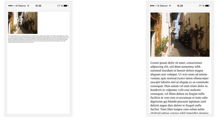 Web page viewports